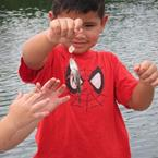 Click to view album: 2013 - Kiddie Fishing Tournament